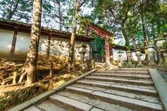 Torii at Kasuga Taisha in Nara Stock Images