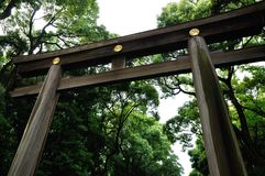 Torii Meiji Shrine, Japão Fotos de Stock Royalty Free