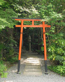 Torii at Otoyo Shrine Royalty Free Stock Photos