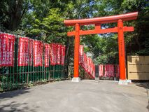 Torii på hastar den Jinja relikskrin, Tokyo, Japan arkivbilder