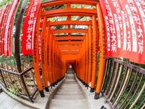 Torii på hastar den Jinja relikskrin, Tokyo, Japan royaltyfria bilder