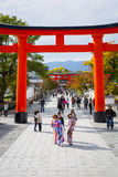 Torii path lined  in Kyoto, Japan Stock Photography