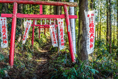 Torii and Path Royalty Free Stock Photography