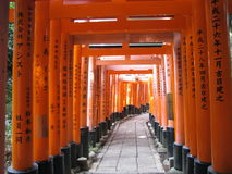 Torii port av den Fushimi Inari relikskrin, Kyoto, Japan Royaltyfri Bild