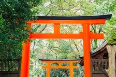 Torii port och skog på den Kawai relikskrin i Kyoto, Japan arkivfoton