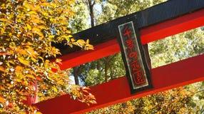 Torii port på japanska trädgårdar Royaltyfri Fotografi