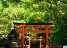 Torii portar av relikskrin, Kyoto Japan Arkivbild