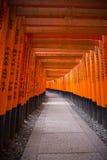 Torii portar i den Fushimi Inari relikskrin Royaltyfri Fotografi