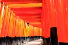 Torii portar i Fushimi Inari förvarar, Kyoto Royaltyfri Fotografi