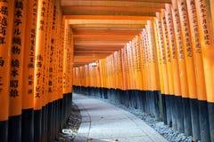 Torii portar i Fushimi Inari förvarar, Kyoto, Japan Royaltyfri Foto
