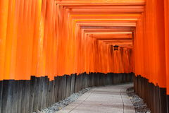 Torii portar i Kyoto, Japan Arkivfoton
