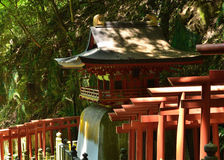 Torii portar och gammal relikskrin, Kyoto Japan Arkivbilder