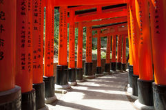 Torii portar på Fushimi Inari förvarar i Kyoto, Japan Fotografering för Bildbyråer
