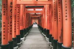 Torii rosso a Fushimi Inari, Kyoto, Giappone Fotografia Stock