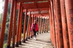 Torii rosso santuario Fukuoka Giappone di Inari di toku in YÅ « fotografia stock libera da diritti