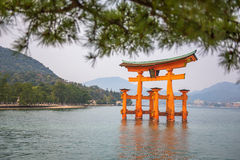 Torii in the sea Stock Photos