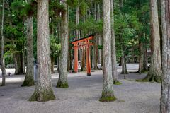Torii-Tor bei Koyasan Wakayama Japan Lizenzfreie Stockbilder
