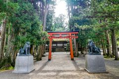 Torii-Tor bei Koyasan Wakayama Japan Stockfotografie
