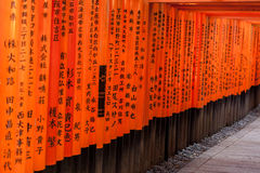 Torii-Tore in Kyoto, Japan Stockbild