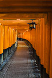 Torii-Tore in Schrein Fushimi Inari, Kyoto, Japan Lizenzfreie Stockbilder
