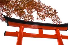 Torii or Tori gate with autumn maple leaf isolated. On white background royalty free stock photo
