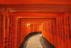 Torii tunnel i Kyoto, Japan Royaltyfria Bilder