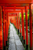 Torii tunnel in Tokyo Stock Image