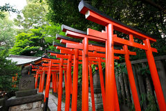 Torii tunnel  Royalty Free Stock Photos