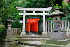 Torii tunnel in Tokyo Stock Images
