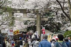 Torii in Ueno lizenzfreie stockbilder