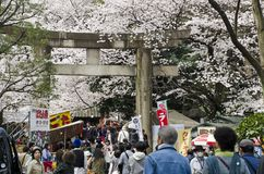 Torii in Ueno Royalty Free Stock Images