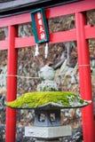 Torii vermelho com musgo fotos de stock royalty free