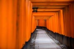 Torii vermelho em japão imagens de stock