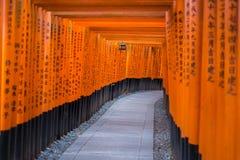 Toriipoorten bij het Heiligdom van Fushimi Inari in Kyoto, Japan Royalty-vrije Stock Foto