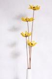 torka blomman Arkivbilder