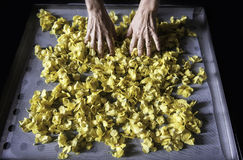 Torka blommasidor Arkivbild
