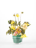Torka blommor Royaltyfria Bilder