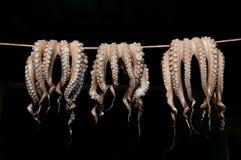 torka den greece naxosbläckfisken Arkivbilder