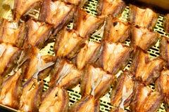 torka den saltade fisken Arkivbilder