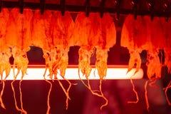 Torka den tioarmad bläckfiskThailand marknaden royaltyfri bild