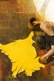 torka färgat låta vara hudar till Royaltyfri Fotografi