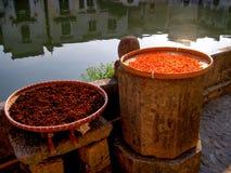 Torka för kryddor som är utomhus- i korgar bredvid månedammet i Hongcun royaltyfri fotografi