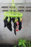 Torka för sockor Arkivbild