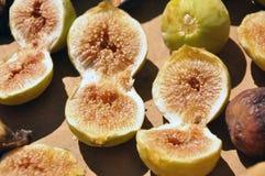 torka figen Arkivfoton