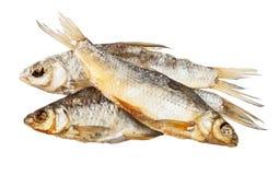 torka fisken Royaltyfri Fotografi