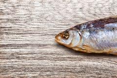 Torka fisken på en träbakgrund Royaltyfria Bilder