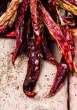Torka glödhet chilipeppar på mörk träbakgrund Fotografering för Bildbyråer