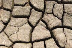 torka jord Arkivbild