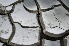 torka jord Fotografering för Bildbyråer