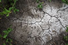 torka landet Sprickor i jorden Bakgrund arkivbilder